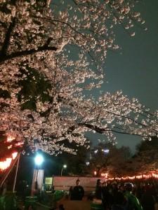 写真 2016-04-02 18 57 33